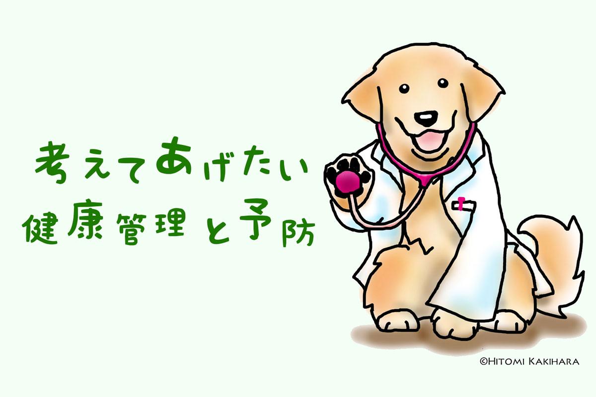 わんちゃん・ネコちゃんの健康管理と予防